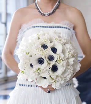 Navy and white bouquetBouquets Bridesmagazine Co Uk, White Flower, White Anemones, Ideas, Bridal Bouquets, Wedding Bouquets, Black And White, White Bouquets, Bibs