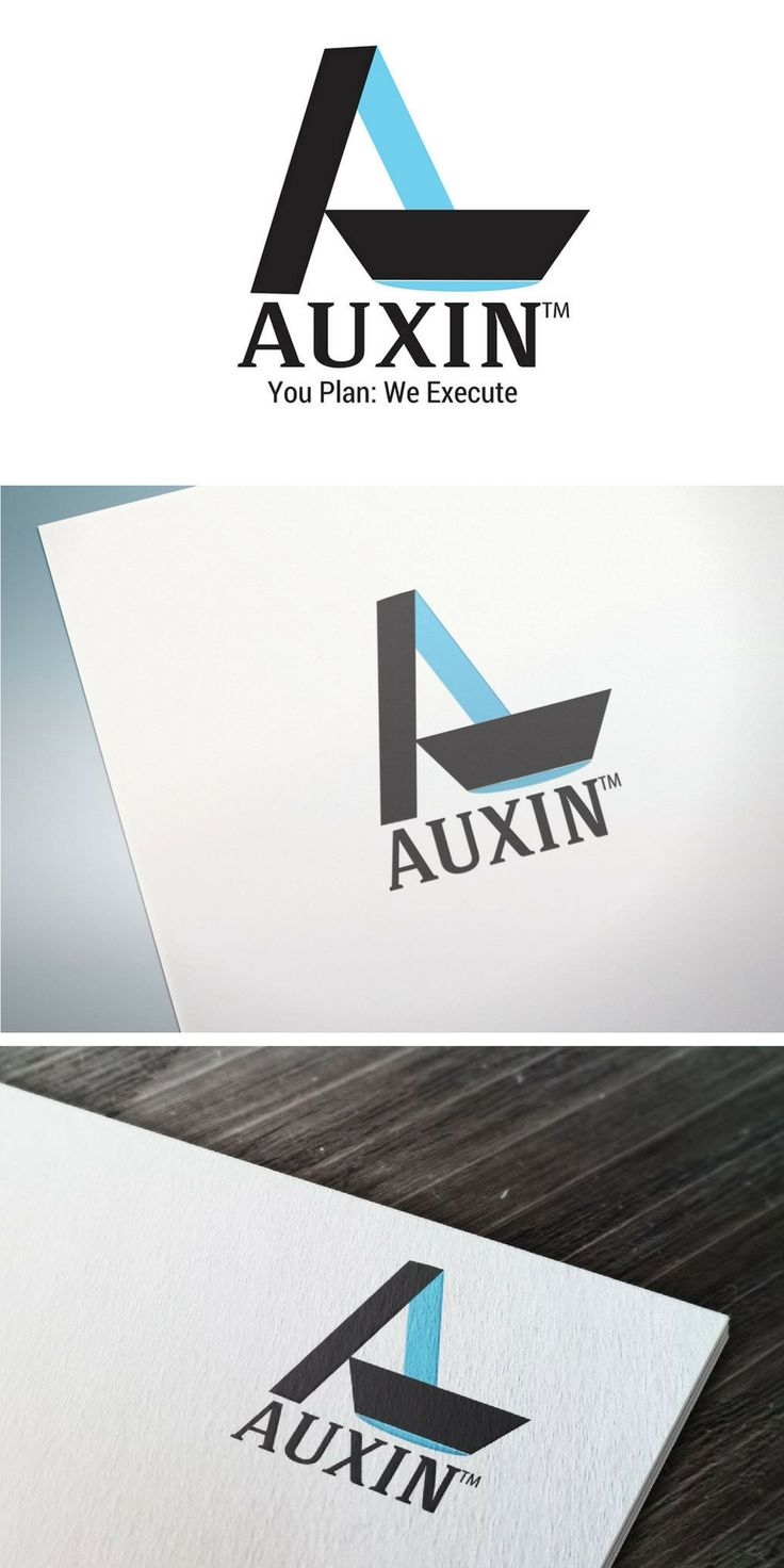 Logo Design for Auxin Shipping by @creativatlas  | Contact us for logo design and branding services | Logo Design services, Branding services, Graphic Design services
