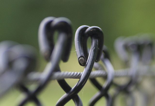 Fence,  shallow depth of field