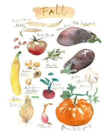 Les légumes d'automne variétés anciennes, aquarelle, décor cuisine, art culinaire