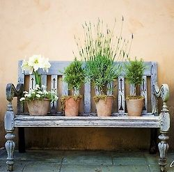 bench with planted pots