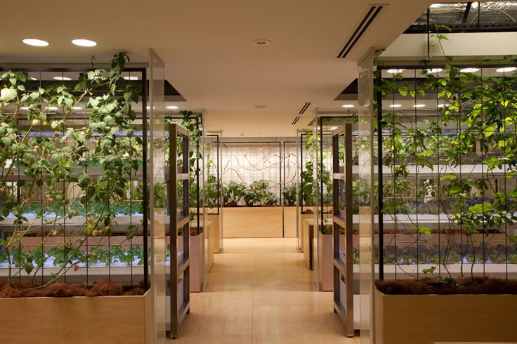 In Tokyo, A Vertical Farm Inside and Out,Courtesy of Kono Designs