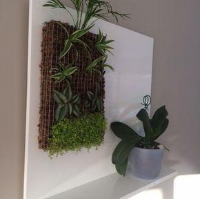 Petit mur végétal et support fait maison