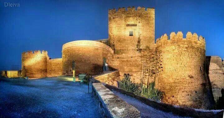 """""""Alcazaba de Almería"""""""