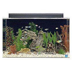 Buying the best30 Gallon fish tank for your fish keeping hobby will come with a