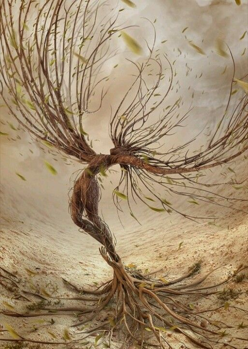 Druids Trees: A Tree Spirit. | Mother Nature Father Earth ...