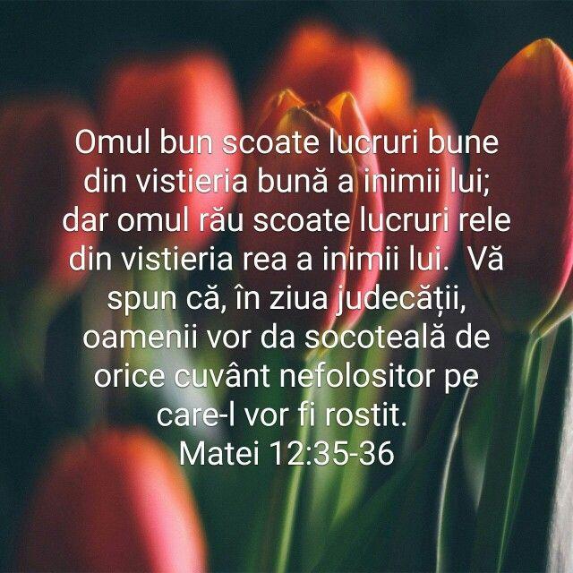 Matei 12:35-36