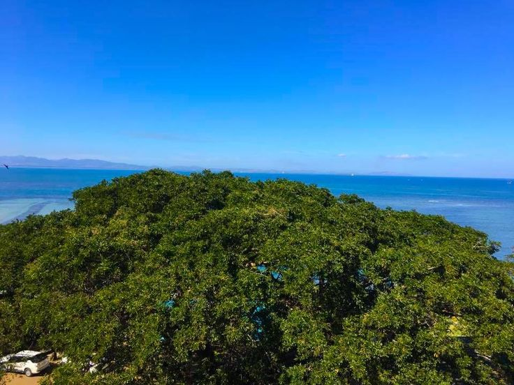 Today's view is simply amazing from the top at Anchorage Beach Resort- blues skies, sunshine and its shimmering reflection on the Pacific Ocean! #anchoragefiji http://www.anchoragefiji.com/
