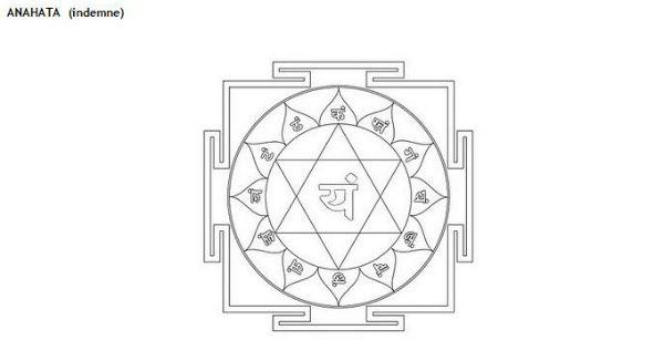 Cuarto Chakra