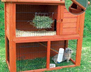 Hábitat del conejo