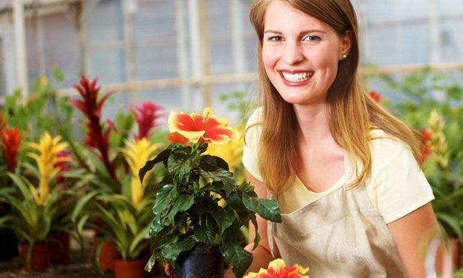 Hoe maak je een tuin binnenshuis Grow - Indoor Tuinieren Tips