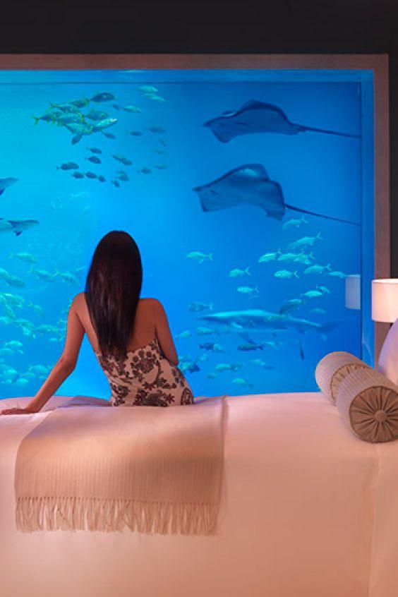 Abtauchen geht auch ohne nass zu werden - im Atlantis The Palm | Dubai