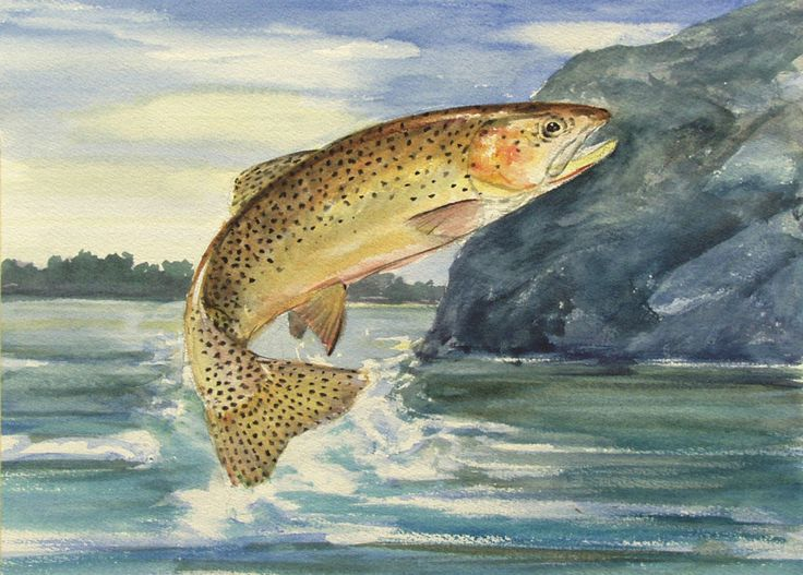 The gallery for --> Fish Jumping Out Of Water Painting ...