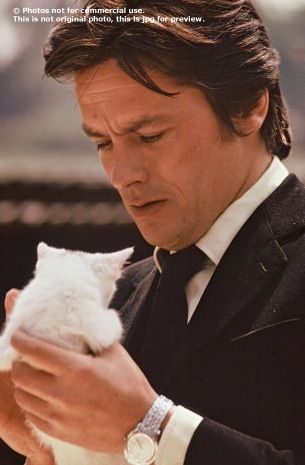 That does it. He's perfect: Alain Delon