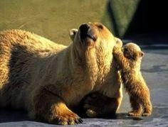 Parenting Sacrifice Quotes within Parenting Quotes Black And White Parenting Cl – parenting quotes