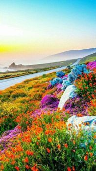 Colorful World 144 Pieces Beautiful Nature Pictures 640 x 480