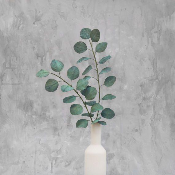 Silver Dollar Eucalyptus due rami, fiori foglie di carta crespa