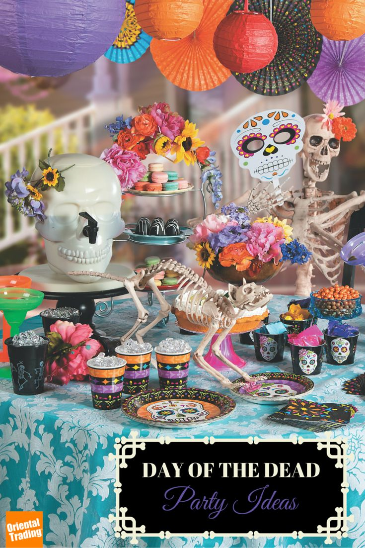 add some color and flavor to this years halloween holiday with party decorations and supplies inspired
