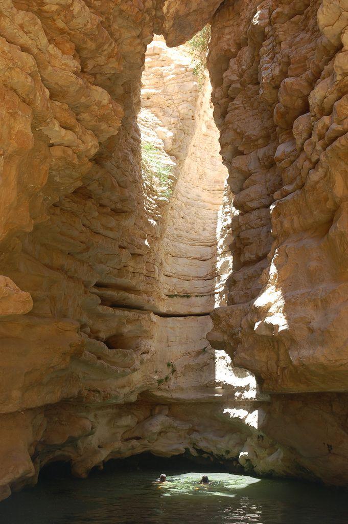 Negev . Israel
