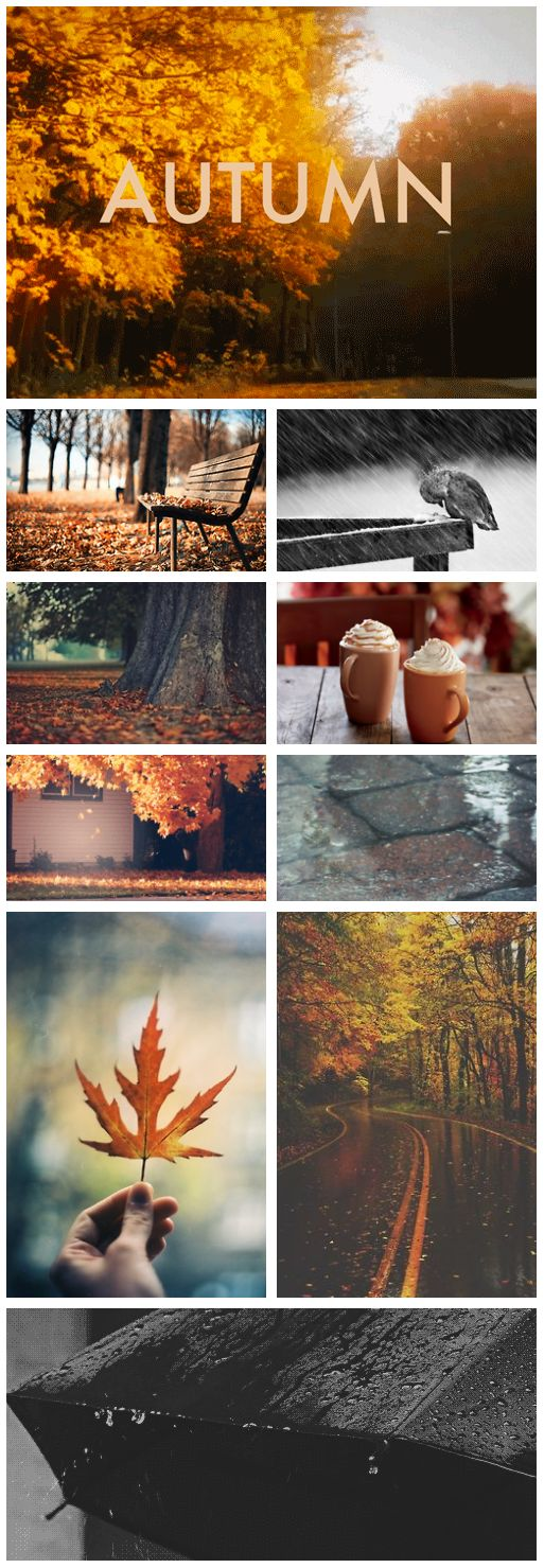 ❦ Autumn Oh my gosh this made me think of  @Beth Wooster