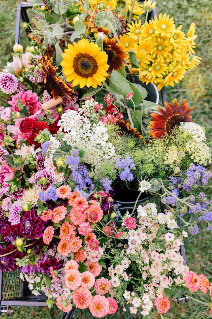1576 best pretties. images on Pinterest | Adventure awaits ...