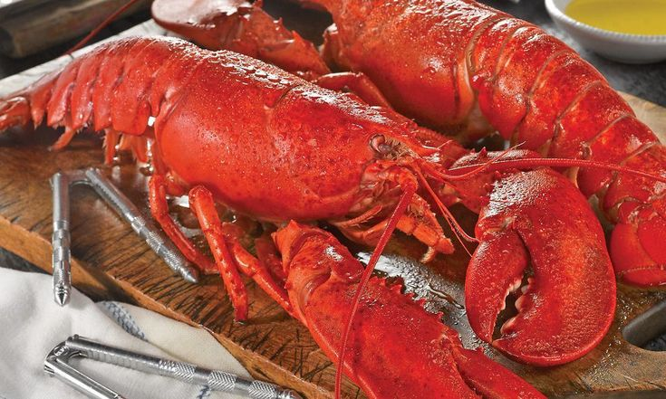 Live Maine Lobsters & Meal Kit