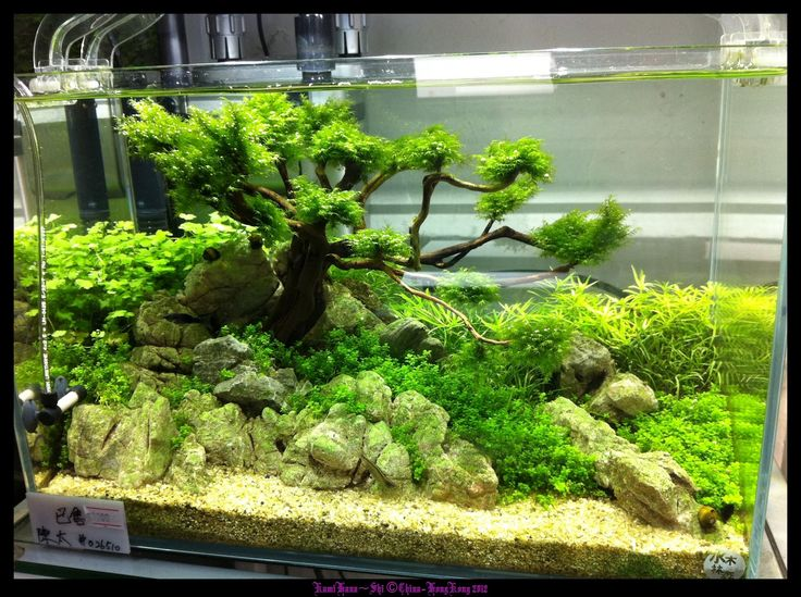 """I love the look of the """"tree"""", but the overall layout feels a bit too crowded"""