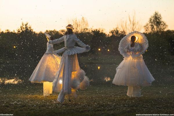 Echassiers blancs lumineux, animation poétique, dans un tourbillon de neige étincellante. http://www.echassiers-blancs-lumineux.com