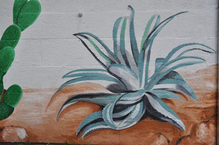 Gevelschildering: cactussen en kauw. Door Andrea Haandrikman, 2015. Acrylverf op ruw stucwerk. Detail agave.