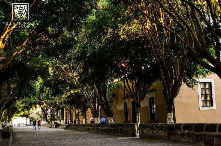 Villa Montaña les desea una semana llena de alegrías y productividad. Morelia retoma sus actividades luego del período vacacional.   #HotelVillaMontaña #Morelia