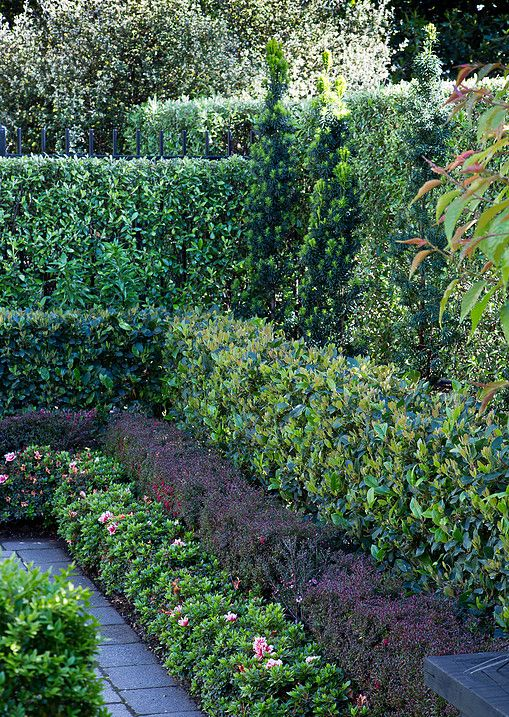 A small, formal garden apartment in the heart of the city, with layered hedges, espaliered jasmines, potager, roses & topiary