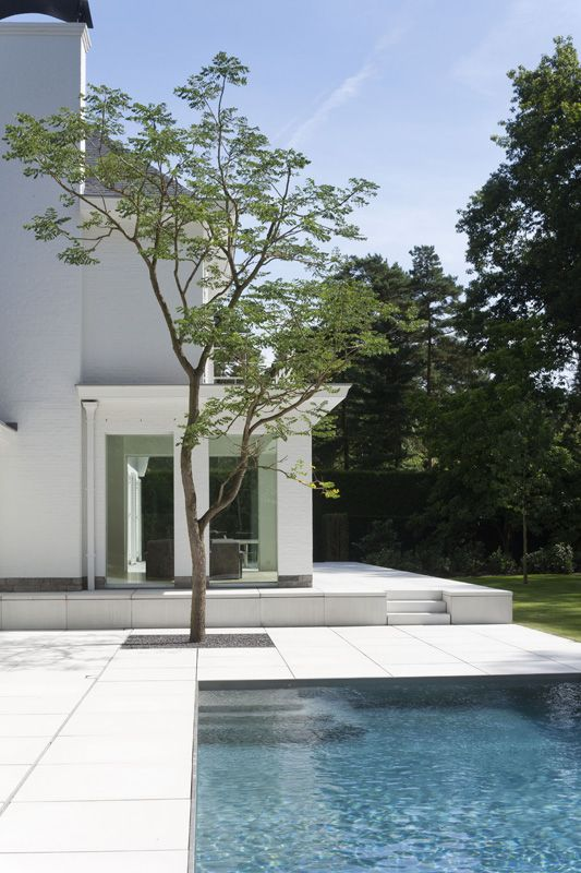 It's preferable when planting a tree or incorporating an existing tree into the landscaping around a pool to choose something evergreen. However, even evergreen trees will defoliate to some extent. This pool and garden by Minus