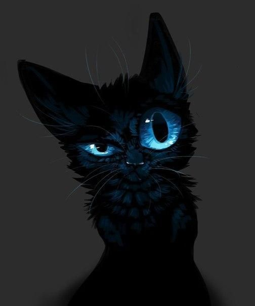 Картинки по запросу крутые авы Cat Черные котята