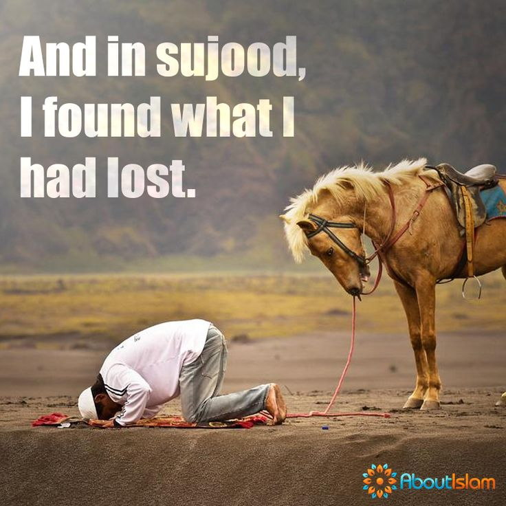 The best position in the world. Sujood!   #Islam #Sujood #CloseToAllah