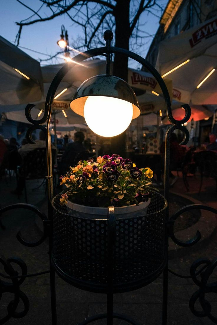 Light. Restaurant. Rynek.