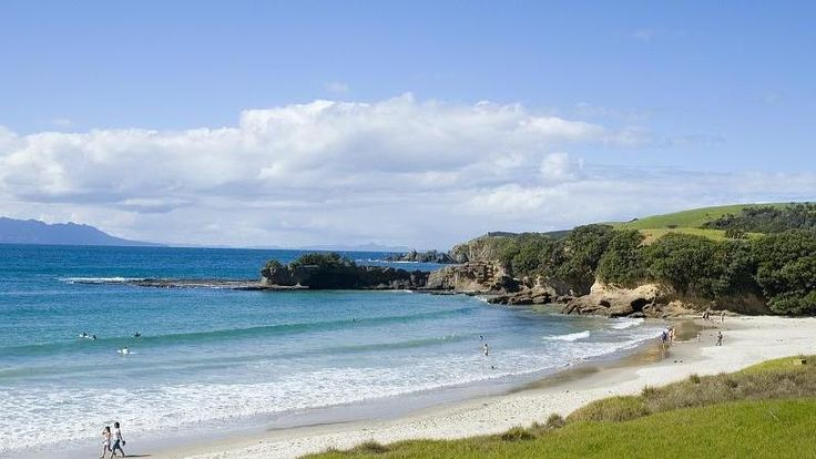 Tawharanui encompasses two secluded bays and is one of the best beaches close to Auckland.