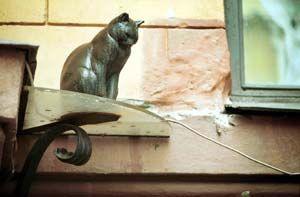 Памятники животным: Кошки - часть 2. Обсуждение на LiveInternet - Российский Сервис Онлайн-Дневников
