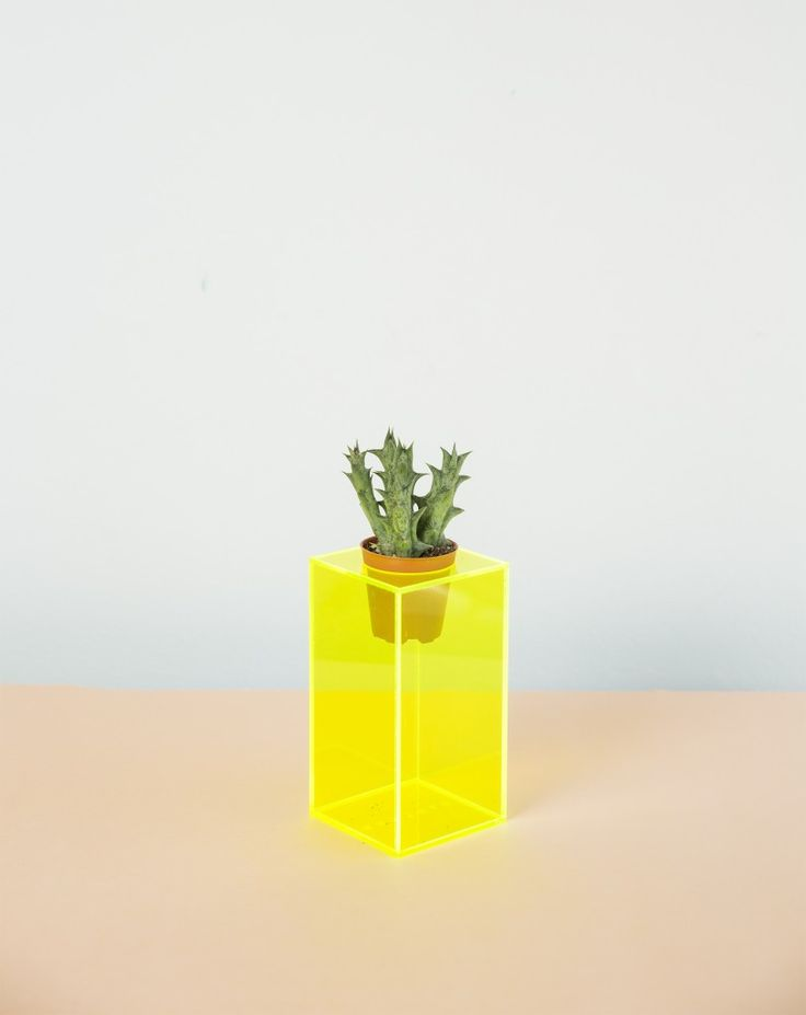 - Tall neon planter by Nawwar Shukriah Ali from the Botanical Artistry Collection