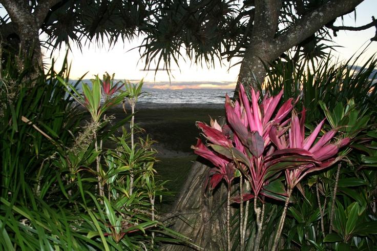 Moreton Island off the coast of Brisbane, AUS