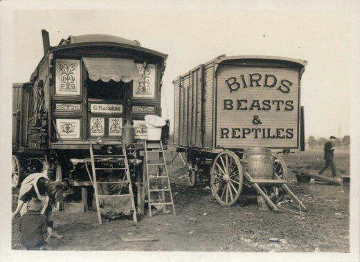 https://i.pinimg.com/736x/03/bd/64/03bd64a272dcfe524ea4320d22f825fe--gypsy-wagon-gypsy-caravan.jpg