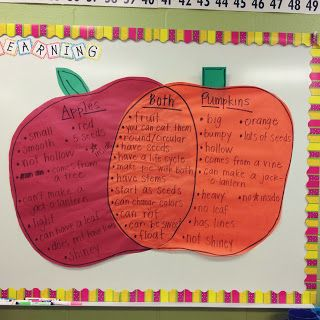 kinder slippers van haren Comparing and contrasting apples and pumpkins