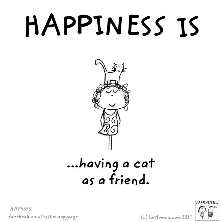 Happiness is having a cat as a friend
