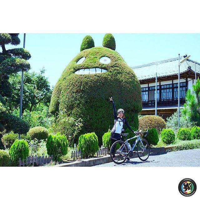 原寸大 トトロの植木があるこの場所は動物病院 神奈川県厚木市の石井どうぶつ病院のエントランスだそうですが 写真におさめたい場所ですね 石井どうぶつ病院 トトロ Trekbikes Betterwithbikes 今週の Cyclography Reposted