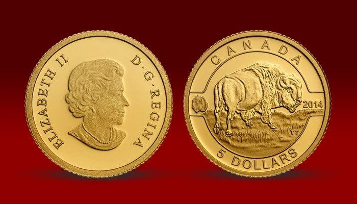 Bizon americký - zlatá mince vzdává hold jedinečnému představiteli kanadské divoké přírody – bizonu americkému.  Emise je vyražena do 24karátového zlata (ryzost Au 999/1000) v nejvyšší mincovní kvalitě. Mince je oficiální emisí Kanadské královské mincovny, která je známá ražbami do kovů s vysokou ryzostí a ve vysoké kvalitě. #narodnipokladnice