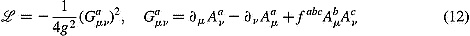 The Yang-Mills Lagrangian, from which the Standard Model of particle physics is built, and which also underlies many important results in pure mathematics.