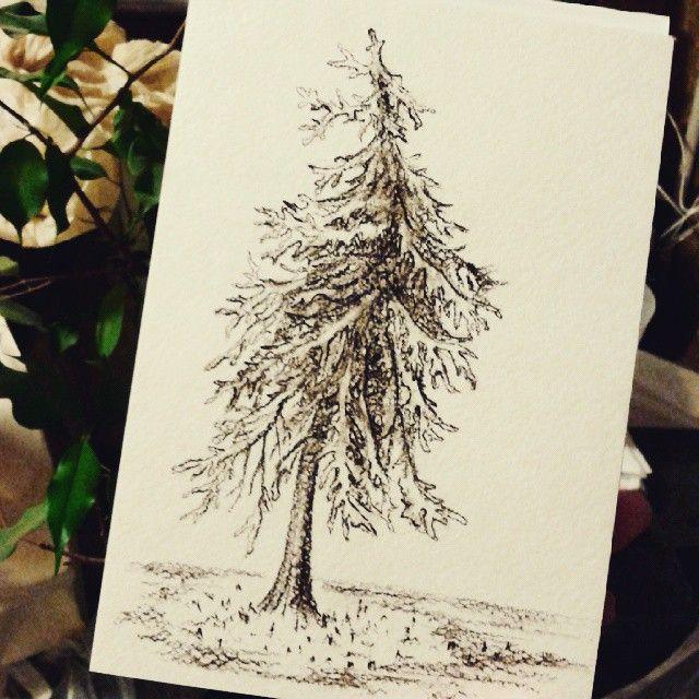 Зная, что у меня будет свободное время перед встречей, пошла, купила блокнот, сепию, и села рисовать накренившуюся елочку рядом с музеем Чернышевского. Солнце, воздух, шорох карандаша - социопат во мне кайфовал. Жаль, настоящую елочку сфотографировать забыла... #ArtBySilmairel #MyArt #Art #Sketch #Sketchbook #Sketch #Sepia #Tree