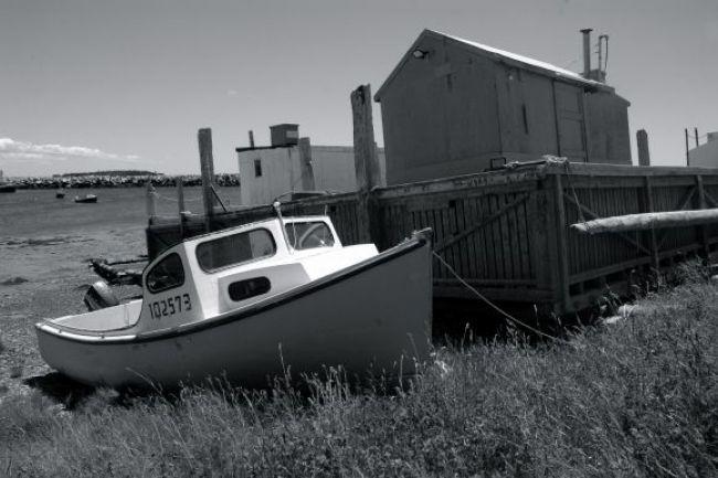 shore of Wedgeport