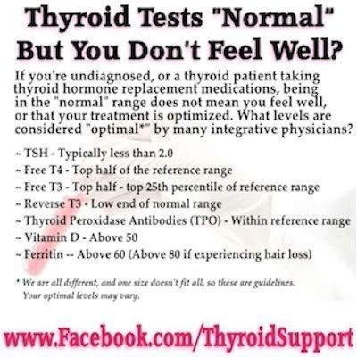 A full thyroid panel should at least include TSH, Free T4, Free T3, Reverse T3 and Thyroid Antibodies, however all these tests are often not...