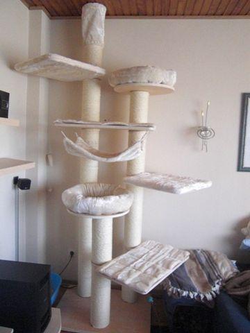 schones kratzbaum im wohnzimmer auflisten images der cfffacfcdcacdce paradise