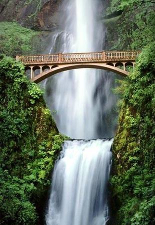 Multnomah Falls, Oregon: Oregon Deb6, Amazing Stuff, Multnomah Falls Oregon, Multnomah Fall Oregon, Beautiful Places, Amazing Places, Oregon Favorite Places Spac, Amazing Pin, Places Spaces